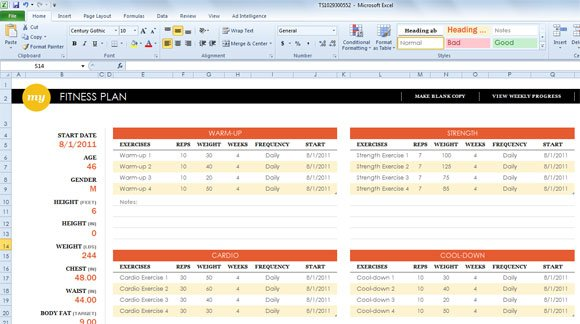 weight training excel sheet